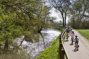 estrasburgo-bici