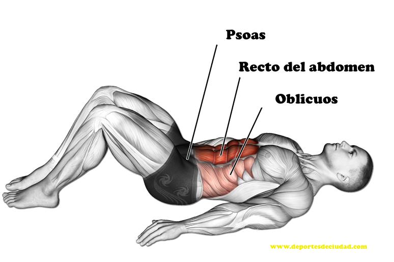 musculos-trabajados-crunch-abdominales