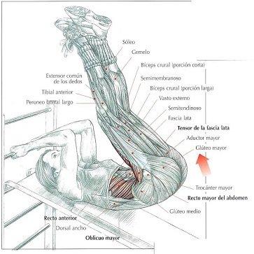 elevaciones-piernas-abdominales
