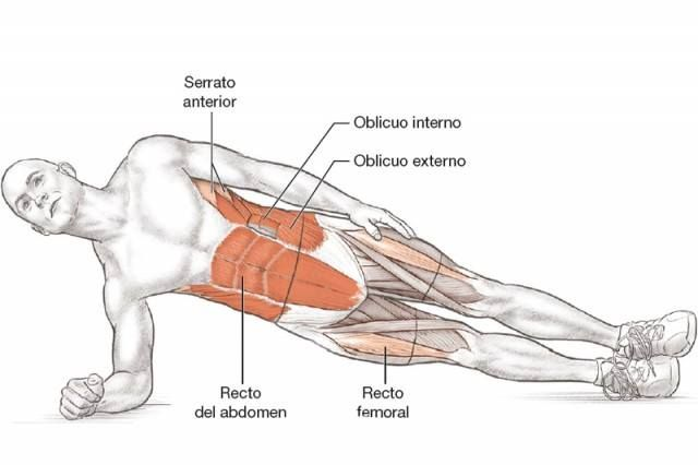musculos-trabajados-plancha-lateral