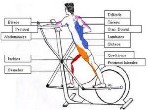 elegir una bicicleta elíptica
