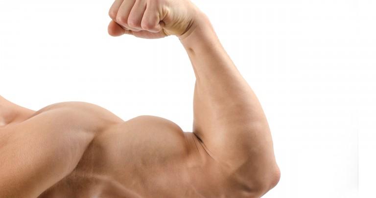 Los 30 mejores alimentos: mejores aliados para alimentar tus músculos