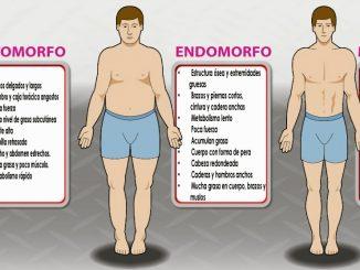morfologías-cuerpo