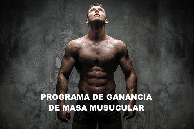 programa de nutrición de ganancia masa muscular