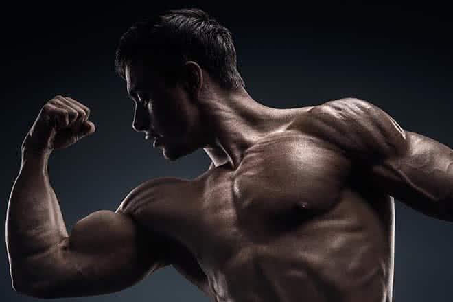 definición-muscular