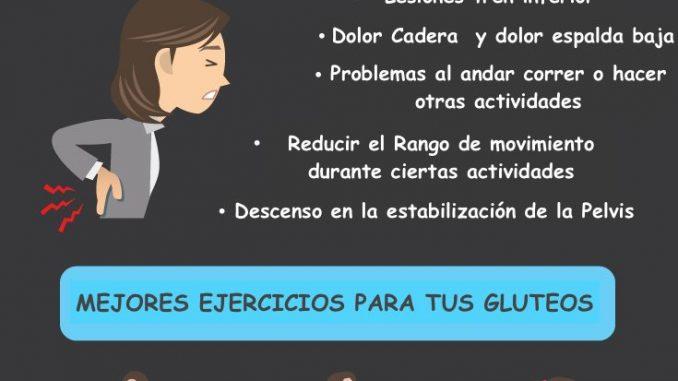 funciones-del-gluteo
