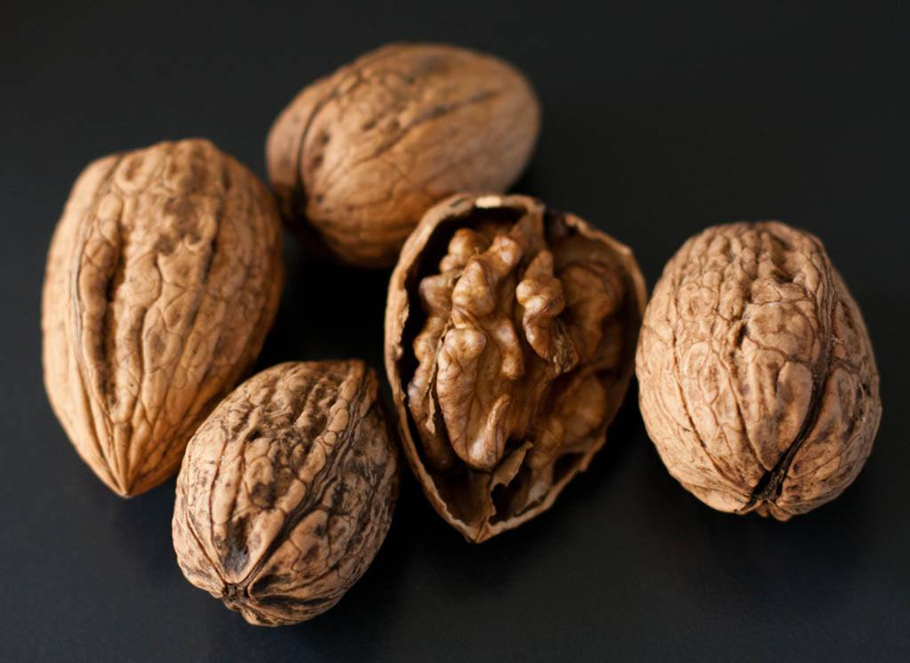 nueces-omegas