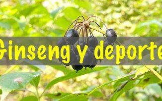 ginseng-y-deporte