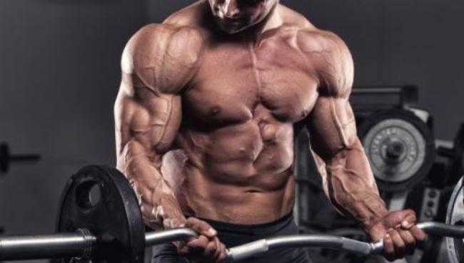 programa-musculación