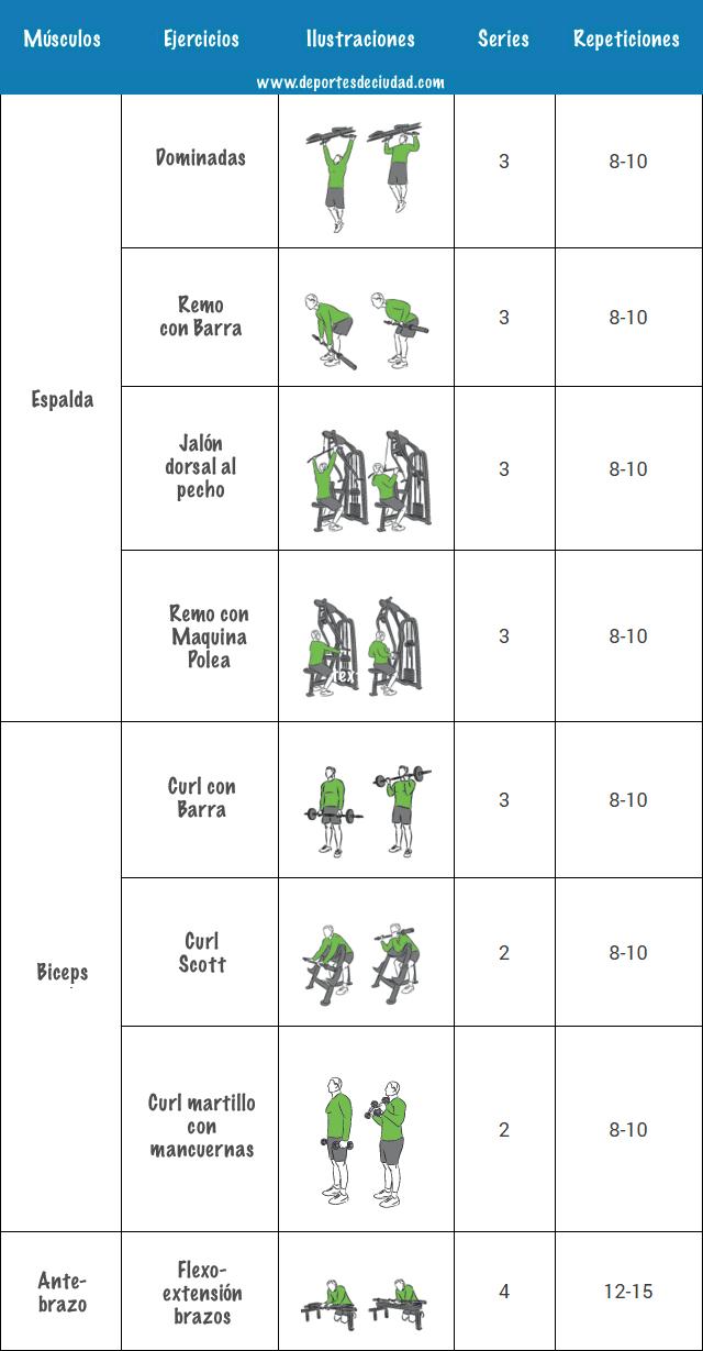 semana-4-programa-musculacion