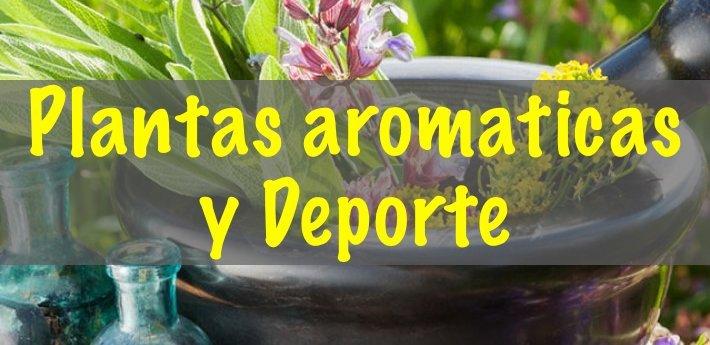 Plantas-aromaticas-deporte
