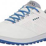 Guia de compra de los Zapatos de Golf