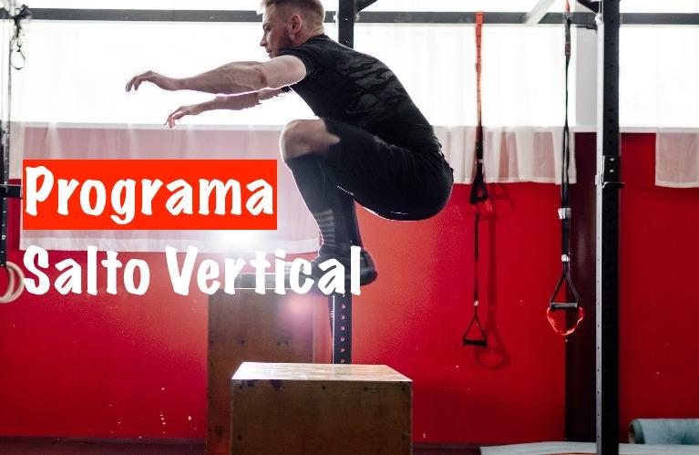 salto-vertical-programa