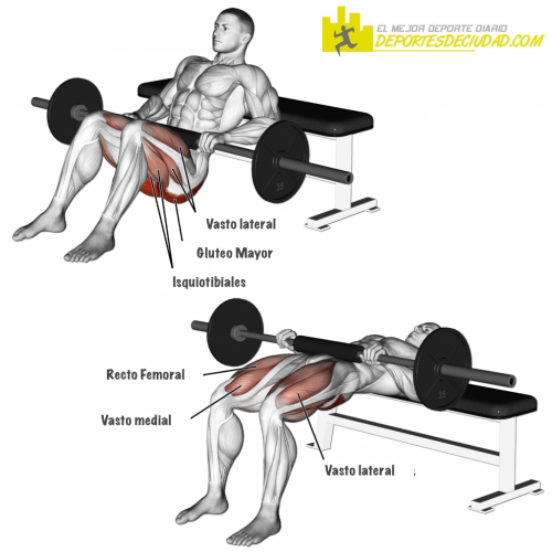 hip-thrust-elevaciones-cadera