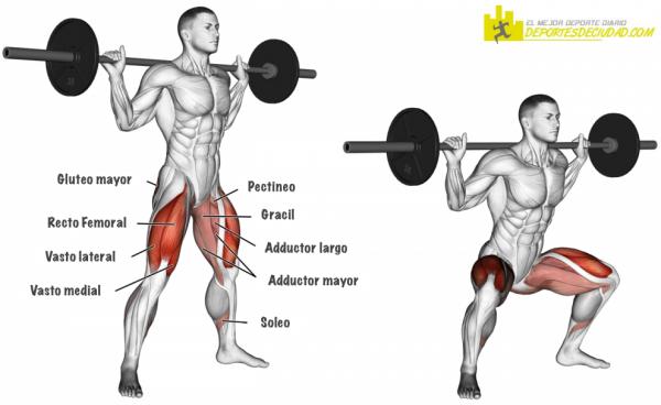 musculos-sentadilla-sumo-con-barra