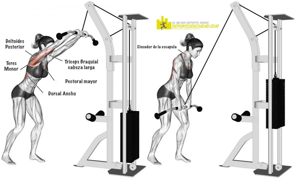 pull-over-polea-alta-ejercicio