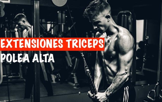 Extensiones Triceps en Polea
