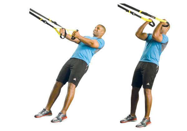 trx-biceps