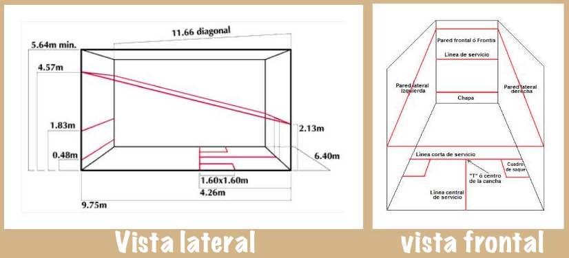 pista-squash-dimensiones