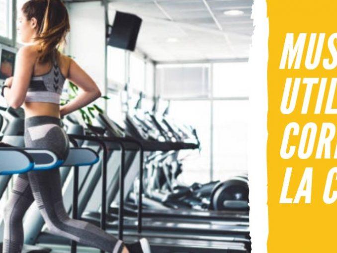 Músculos que Utilizamos cuando corremos en la cinta