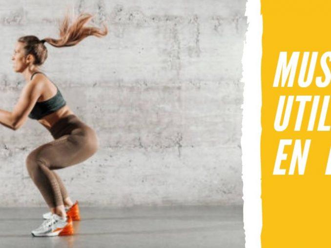 Músculos que Utilizamos en el Fitness
