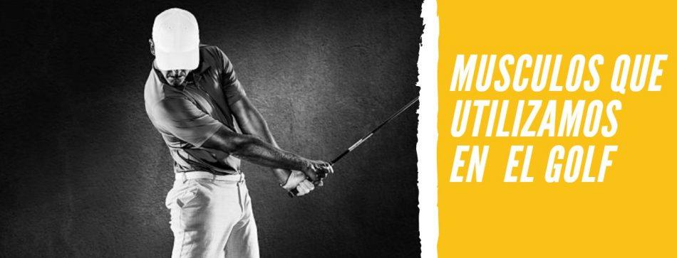 musculos-golf