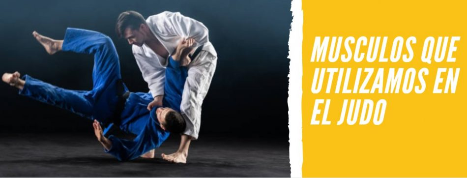 musculos judo