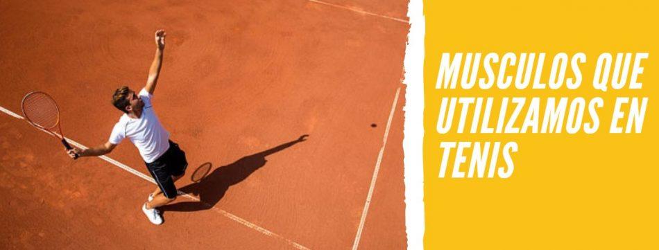 musculos-tenis